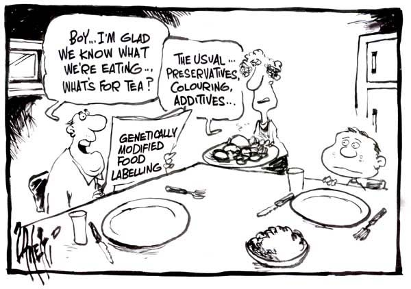 Genetically Modified Foods Harmful Or Helpful